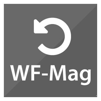 system spedycyjny - integracja z WF-Mag